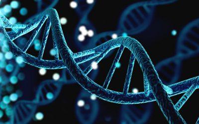 Genomica: una preziosa risorsa per la ricerca e la clinica cardiovascolare