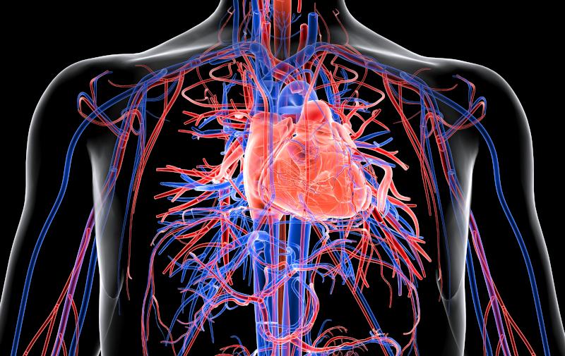 Prevenzione cardiovascolare: stato dell'arte e futuri sviluppi
