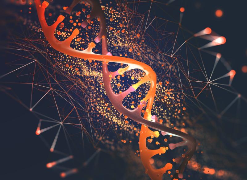 Contributo della genetica alle malattie cardiovascolari complesse