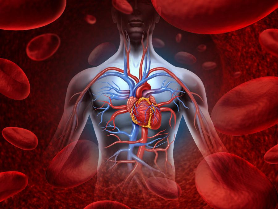 Nuovi dati supportano l'uso di Edoxaban in pazienti complessi con fibrillazione atriale